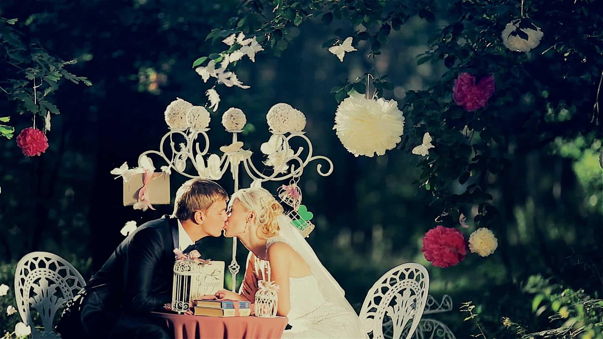 Wedding Video Snapshot